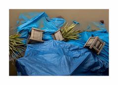 loquence muette (hlne chantemerle) Tags: blue paris water seine composition river eau photographie flood pluie bleu extrieur paysages muddy inondation plantes boueux urbain bche bacs pictural photosderue cruemaijuin2016