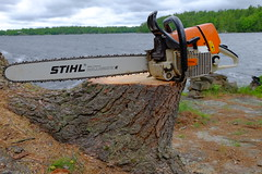 DSCF4990 (dltree76) Tags: lake tree nature water saw log forestry chainsaw logging logger lumberjack arborist stihl treeservice