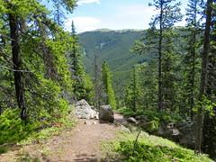Jumpiingpound Mountain Hike - In the distance - Cox Hill (benlarhome) Tags: canada kananaskis rockies hiking hike alberta rockymountain jumpingpound