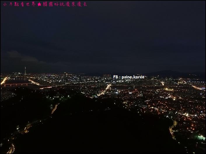 南山首爾塔夜景 (49).JPG