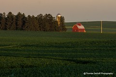 Big Red Barn in the Great Green Field (Thomas DeHoff) Tags: red summer green barn sony iowa a580
