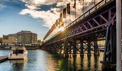 Pyrmont Bridge, Darling Harbour (m0dernlife) Tags: boat harbour flag au sydney australia newsouthwales pyrmont darling