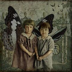 Sweet Fairies (GdCt) Tags: dream fairies nias sueo hadas littlegirls