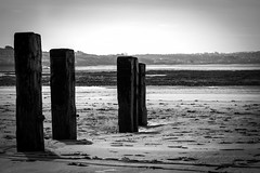 Pillars in the Sand (Jon Lelacheur Photography) Tags: bw white black jon north devon braunton lelacheur