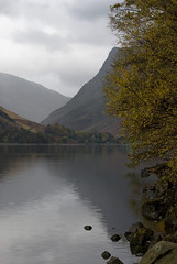 Buttermere and Honister Crag (Nick Landells) Tags: autumn lake rain grey lakedistrict rainy cumbria birch buttermere silverbirch fleetwithpike honistercrag