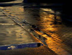 where the road meets the sky (Laurarama) Tags: road street shadow sky sunlight reflection wet rain night clouds reflections pavement text after ontheroad odc hcg nikond7000 laurarama nikkor50mm18aprg