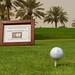 Golf-2148