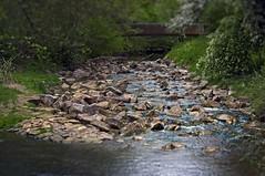 Course of the river Ammer - 1/2 (KF-Photo) Tags: tübingen ammer österberg flusslauf flluss
