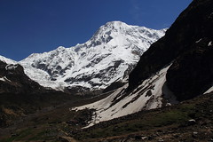Pindari Glacier and Changoch mountains (Saroj Mishra) Tags: nature uttaranchal himalaya pindariglacier