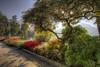 Lugano (fotopierino) Tags: verde canon lago 7d fiori colori lugano hdr 1022 pianta chswitzerland fotopierino parcocivicocitypark