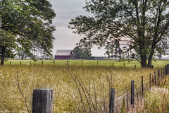 Farm Scene (LarryHB) Tags: usa field farmhouse barn canon fence landscape farm missouri crops hdr 2012 hff day143 load16 load18 load20 load21