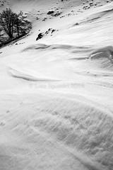 snow in BW (wild friday) Tags: sardegna blackandwhite snow neve inverno montagna marzo paesaggio biancoenero gennargentu