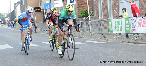Herman Vanspringels Diamond 2014 (156)