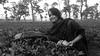 aney (haider.bd) Tags: garden tea bangladesh teagardens srimongal aney