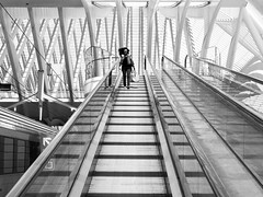(Magdalena Roeseler) Tags: street bw monochrome candid streetphotography calatrava sw liege strassenfotografie