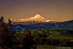 Mt Hood (Colleen Easley) Tags: morning mthood columbiagorge