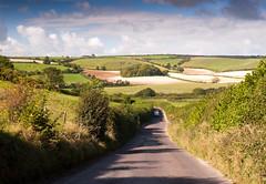 Sydling Valley (Joe Dunckley) Tags: road uk england field landscape hill farmland lane dorset agriculture rollinghills cerneabbas downland dorsetdowns sydlingvalley