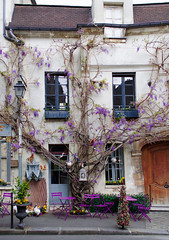 Au vieux Paris (Davit Khutsishvili) Tags: city travel paris france architecture photography restaurant spring nikon violet 1855mm parisian 2016 d5100 nikond5100 davitkhutsishvili dkhphoto