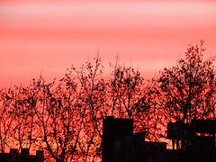 Atardecer en rosa 2 (Natyfotografa) Tags: puesta de sol cielo sunset