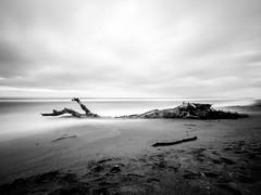 Time off (Un ragazzo chiamato Bi) Tags: longexposure sea bw beach mare olympus nd bianco nero spiaggia omd zd maredinverno 1000x f4056 em5 chiarone 10stop 918mm