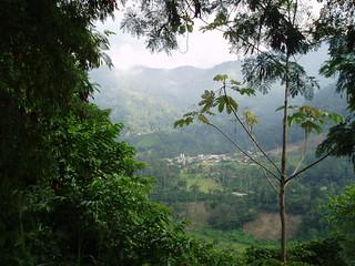 Venezuela - Estado de Mérida - Tucaní