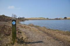 Follow the blue arrows (-Kj.) Tags: blue sand dunes hike arrow signpost schoorl schoorlseduinen vogelmeer sanddyner