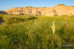 Toadstool Grasslands (kevin-palmer) Tags: nebraska toadstool toadstoolgeologicalpark june summer nikond750 greatplains highplains oglalanationalgrassland early morning sunrise dawn clear sunny blue sky badlands crawford grassland yucca tamron2470mmf28