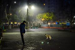 Juegos Matutinos. Plaza 1 de Mayo, Bs. As (guspaulino1) Tags: plaza argentina buenosaires nikon gente ciudad amanecer niebla mascotas nikon35mm balbanera plaza1demayo nikond7000