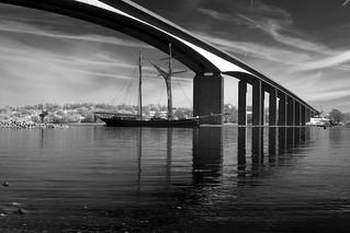 Tall Ship Under Orwell Bridge