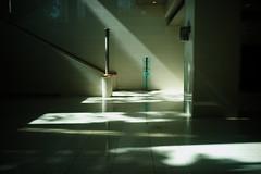 Sunbeam (mrhayata) Tags: sunlight japan stairs geotagged tokyo blog floor sunbeam chiyoda mrhayata geo:lon=139738863 geo:lat=35679006