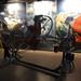 Museo de las Ciencias Príncipe Felipe_7