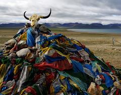 西藏 (lulusheshe) Tags: tibet 西藏 青藏鐵路