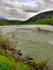 Vedder River Freshet (Shore Birder) Tags: mountains vancouver river chilliwack vedder freshet vedderriver