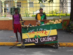 SAM_0708 (Snappr007) Tags: street vacation favorite holiday colour sexy tourism beautiful shop fruit composition interesting nikon different place random coconut pov good unique quality postcard working scenic award landmark visit exhibit location best example jamaica contacts jelly vendor balance caribbean cart favourite trade geotag winston interest fovorite nationalgeographic onelove ochi ochorios mostviewed westindies hustling interestiness expore tinubu jellycoconut flickriver d5100 winstontinubu httpswwwfacebookcomwinstontinubuphotography limeing snappr007 winstontinubuphotography