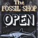Open for ichthyosaurs