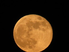 """Orange"" Full Moon 6 (camera_chi1225) Tags: chicago june illinois il fullmoon junemoon"