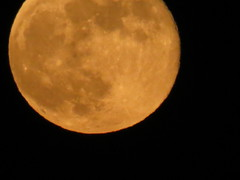 """Orange"" Full Moon 10 (camera_chi1225) Tags: chicago june illinois il fullmoon junemoon"