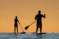 Stand-up couple (RobertCross1) Tags: ocean sunset woman man beach water silhouette hawaii surf waves pacific waikiki oahu paddle surfing honolulu sup kaimana standuppaddle
