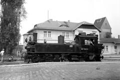 99 1542-2 at Mugeln (RhinopeteT) Tags: germany steam east oschatz mugeln