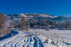 (zhouyousifang) Tags: china winter snow landscape countryside  yunnan   2014