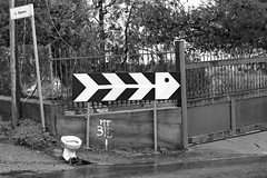 street fish (vlady art) Tags: road street italy white fish streetart black sign crisis vladyart