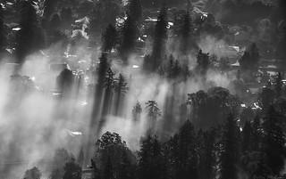 Fog Below, in Sunlight