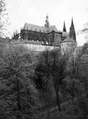 St. Vitus Cathedral at Prague Castle II (holtelars) Tags: blackandwhite bw 120 film monochrome architecture analog mediumformat 645 prague pentax praha 200iso czechrepublic analogue 6x45 f28 45mm stvituscathedral praguecastle czechia foma pentax645 filmphotography rodinalspecial fomapan fomapan200 classicblackwhite 645n homeprocessing fomapan200creative filmforever smcpentaxfa r09spezial larsholte compardr09spezial