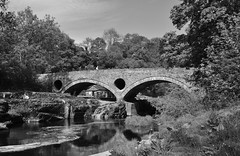 Cenarth Bridge (hurlham) Tags: bridge river teifi