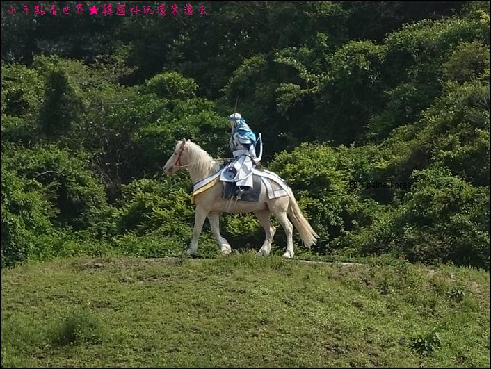濟州The馬park (27).JPG