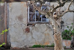 possum magic (HOLLY HOP) Tags: reflection tree brick window nature stone wall architecture garden outdoors cottage australia historic windowreflections centralvictoria hww wallwednesdays tworoomcottage lovescottagestarnaud