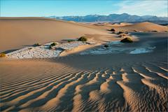 Sand dunes in Death Valley (liseykina) Tags: california park morning travel sunset summer orange usa hot nature yellow sunrise landscape sand unitedstates desert outdoor background dunes sandy dune great wave dry national deathvalley shape erg furnacecreek mesquiteflatsanddunes