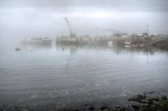M.V. Valiant arrives on Alderney in the fog (neilalderney123) Tags: weather fog ship valiant alderney braye alderneyshipping 2016neilhoward
