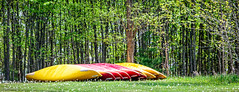 Camp Iawah (Dbell2006) Tags: red ontario canada yellow outdoors woods canoes westport summercamp