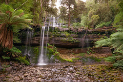 Ascend (jeffbrian) Tags: trees water pool forest waterfall rainforest rocks stream australia hike tasmania tassie russellfalls mountfieldnationalpark